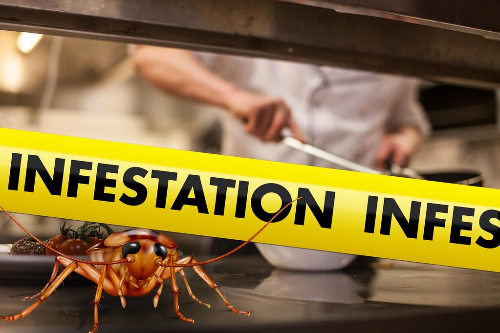 Pharmcle Ph Roach Infestation